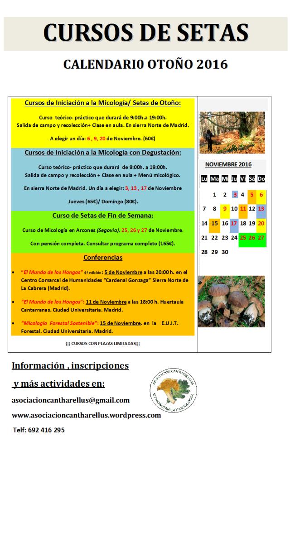 Cursos de setas en Madrid